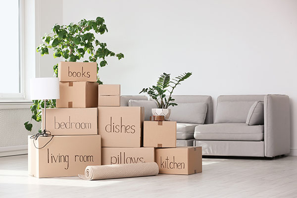 Discover Stress-Free Moving